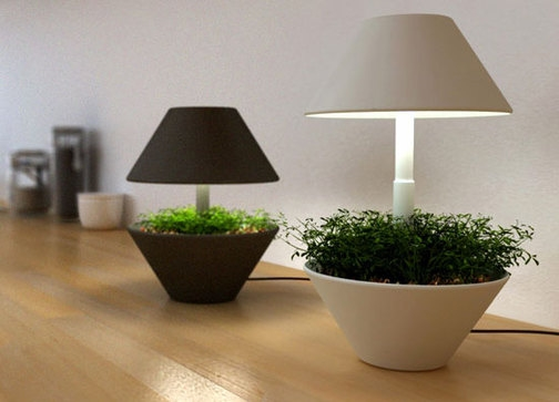 - Cache pot interieur design ...